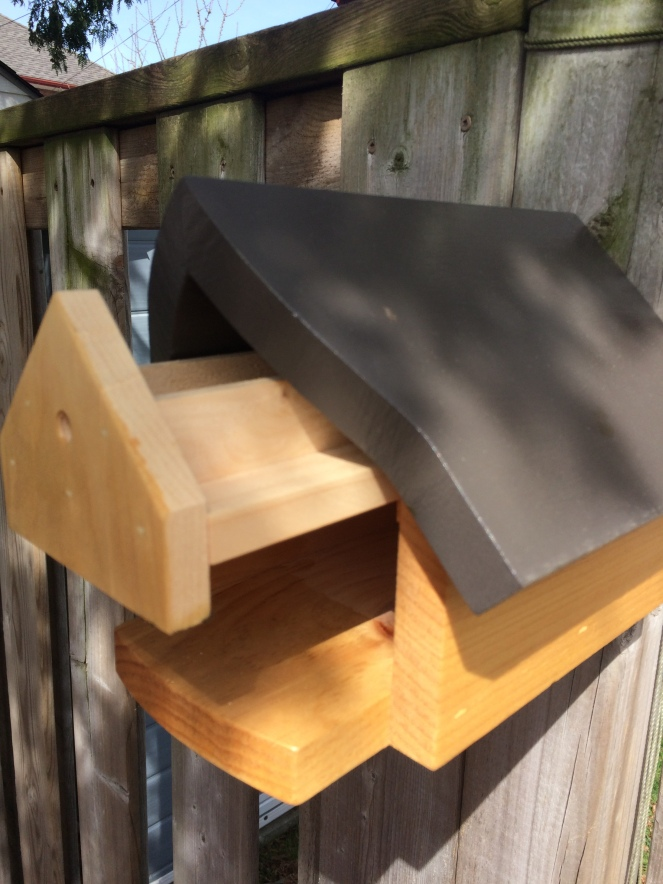 How to raise mason bees and leaf cutter bees